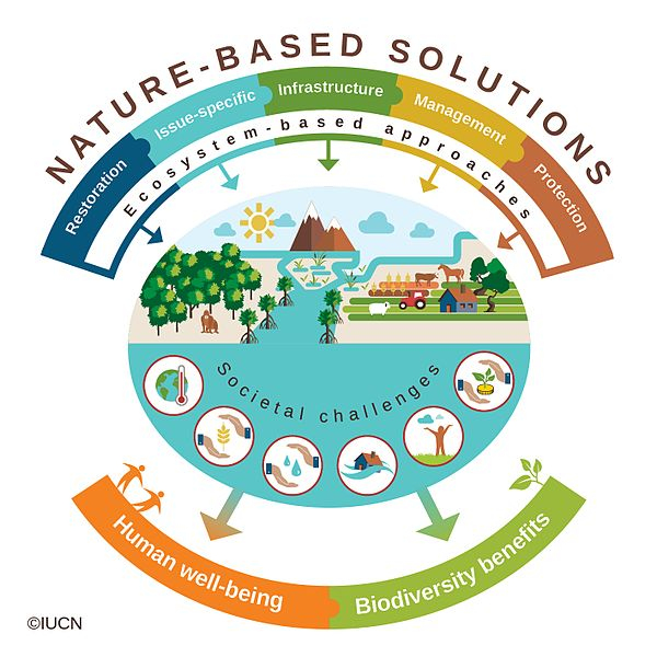 Nature Based Solutions